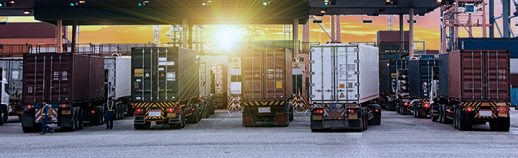 flota de camiones de carga
